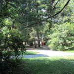 Sfalci d'erba e manutenzione dei parchi, tutti gli interventi previsti per la cura del verde a Cividale