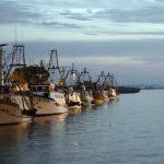 Inquinamento del mare e divieto di pesca, la denuncia degli operatori del settore