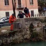 Caduto nel canale Ledra a Udine, ritrovato morto: si era allontanato da casa