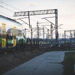 A Magnano obbligo di tagliare rami e piante a ridosso della ferrovia