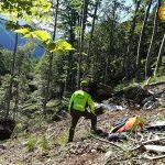 Tragedia sulla strada del Monte Pura, muore a 55 anni schiacciato da un tronco mentre lavorava
