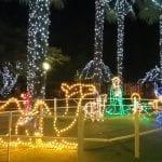 Da Lignano a Tolmezzo, gli alberi e le luminarie che accendono il Natale