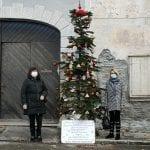 Tutti i quartieri di Gorizia hanno avuto il loro albero di Natale con le palline decorate dai bambini