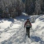 Nuovo percorso con le ciaspe per scoprire la bellezza della natura nel Tarvisiano