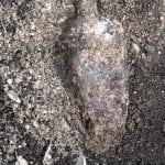 Scavano in un terreno e trovano una bomba a Campoformido