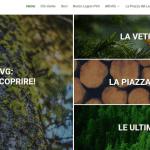 Da Tolmezzo la nuova piazza virtuale per il comparto bosco-legno