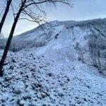 """Cinque valanghe in Val Resia ed altri distacchi più piccoli. La sindaca: """"Ci sono danni"""""""