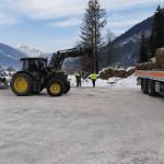 Fauna selvatica in difficoltà per la troppa neve: serve il foraggiamento di soccorso