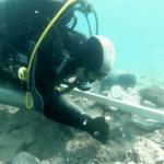 Un parco archeologico subacqueo a Grado attorno al relitto della nave romana