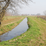 Torna a Buttrio l'acqua della roggia per la gioia di escursionisti e agricoltori