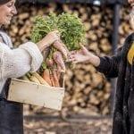 Arriva a Udine l'Alveare per fare la spesa direttamente dai produttori locali
