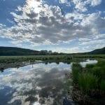 In diretta due conferenze per scoprire la meravigliosa riserva dei laghi di Doberdò e Pietrarossa