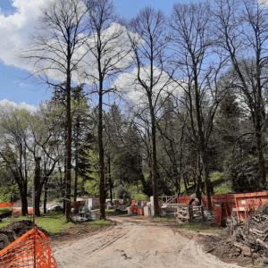 Sentieri, area fitness e bici: ecco come sarà il nuovo Central Park di Gorizia
