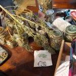 L'amico ospite lo mette nei guai, gli trovano in casa un bazar della droga a Gorizia
