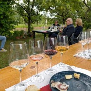 Cantine Aperte si prepara al bis, 30 aziende vinicole del Fvg si offrono ai visitatori