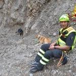 Cagnolini precipitano nella dolina a Sauris, si mobilitano per salvarli i vigili del fuoco