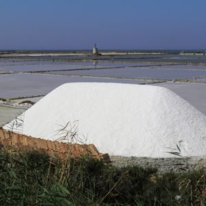 Forse non tutti sanno che ad Ariis c'erano degli importanti magazzini di sale