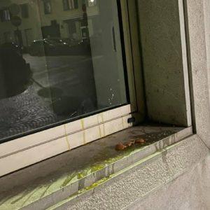 Uova marce contro la sede dello Scriptorium, il gesto fa scalpore a San Daniele