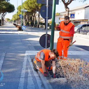 Banda larga a Lignano, la sua società vola tra le migliori startup in Italia